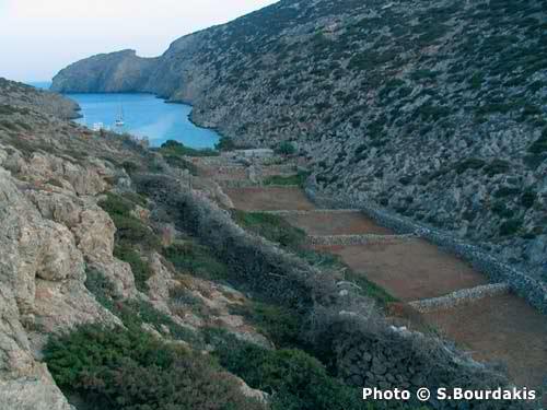 Λέβιθα και Κίναρος δύο αμοργιανά νησιά